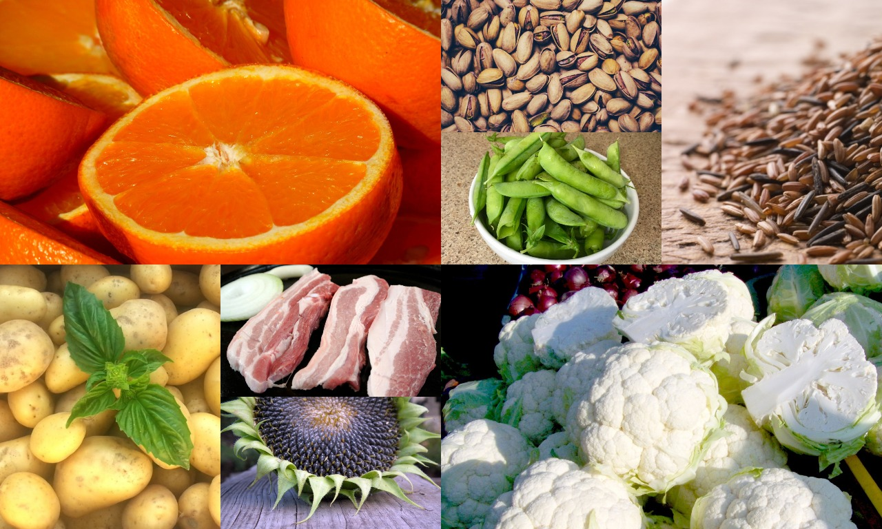 Vitamin B1 rich foods