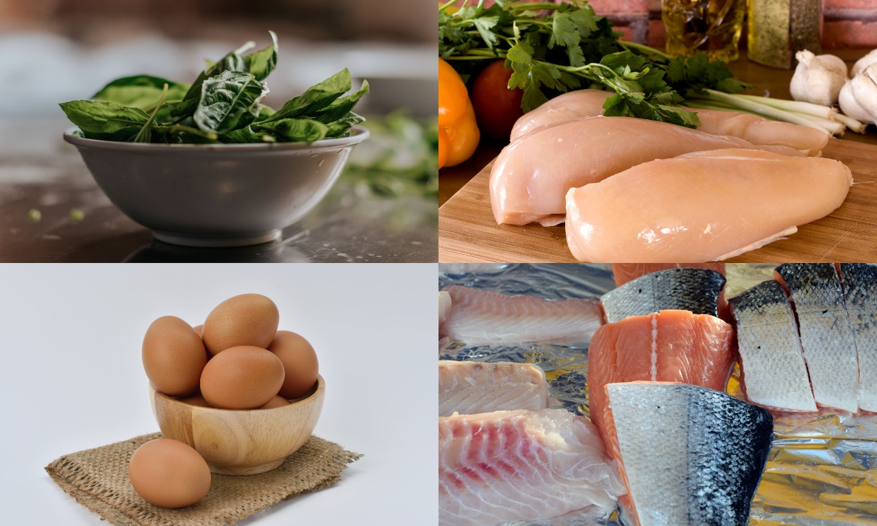 The most useful protein in foods